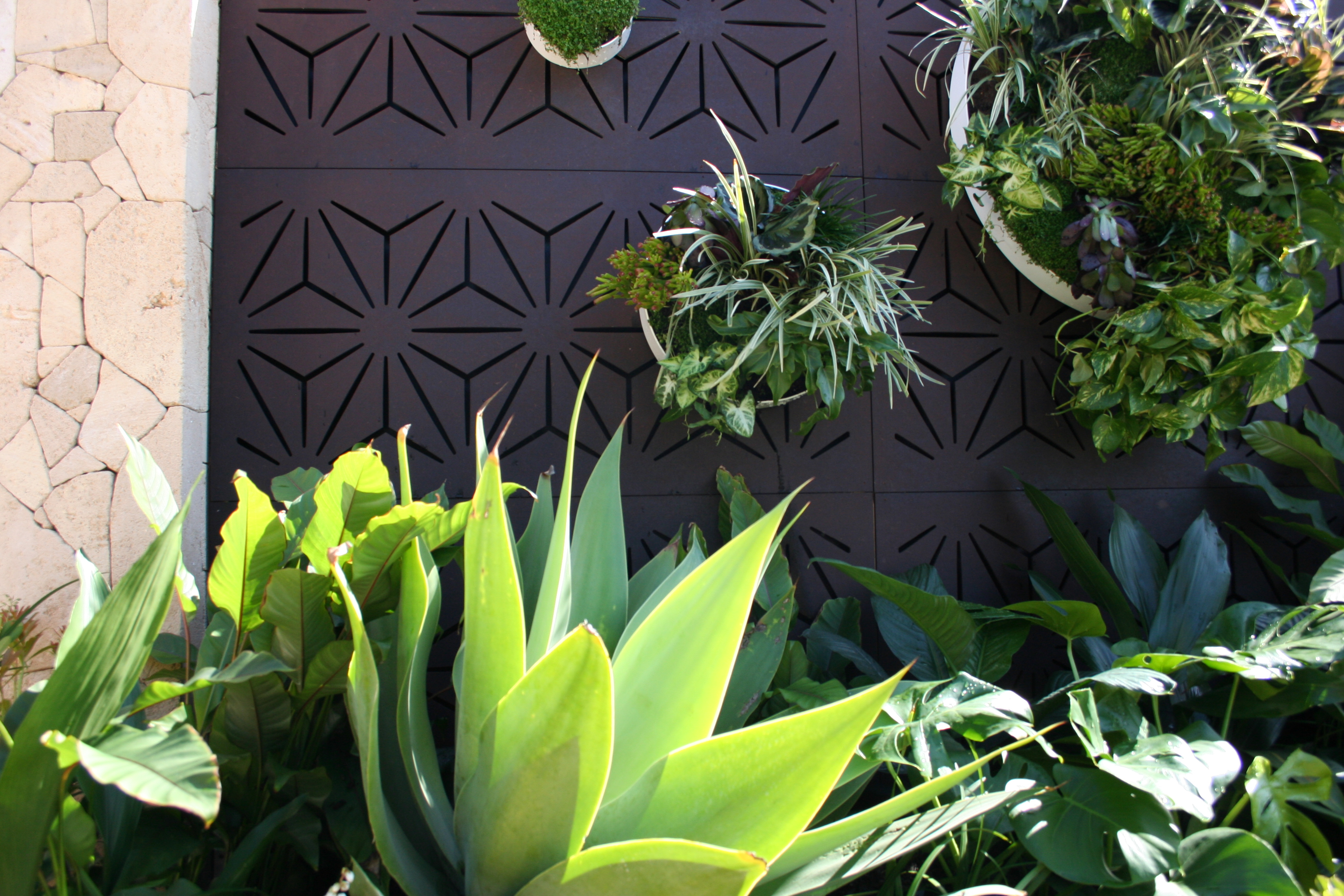 Screens and Vertical Gardens